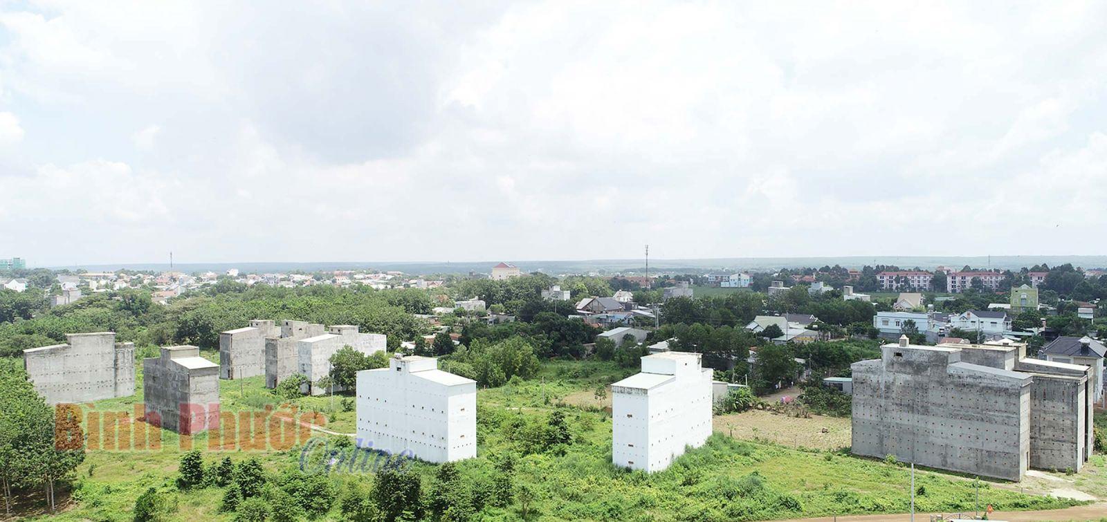 Do lợi nhuận cao, người dân đổ xô xây nhà nuôi chim yến - Ảnh chụp tại phường Tân Bình, thành phố Đồng Xoài